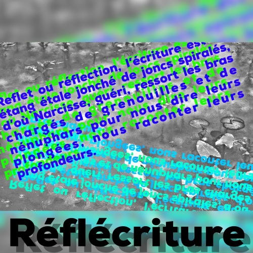 016d06136ce79fb2359a674b8185598753f19c78e7 - Copie.jpg